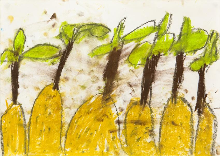 11. Shiloni Katta, 'Tree Paper', Kindergarten, Presbyterian Ladies' College, Armidale
