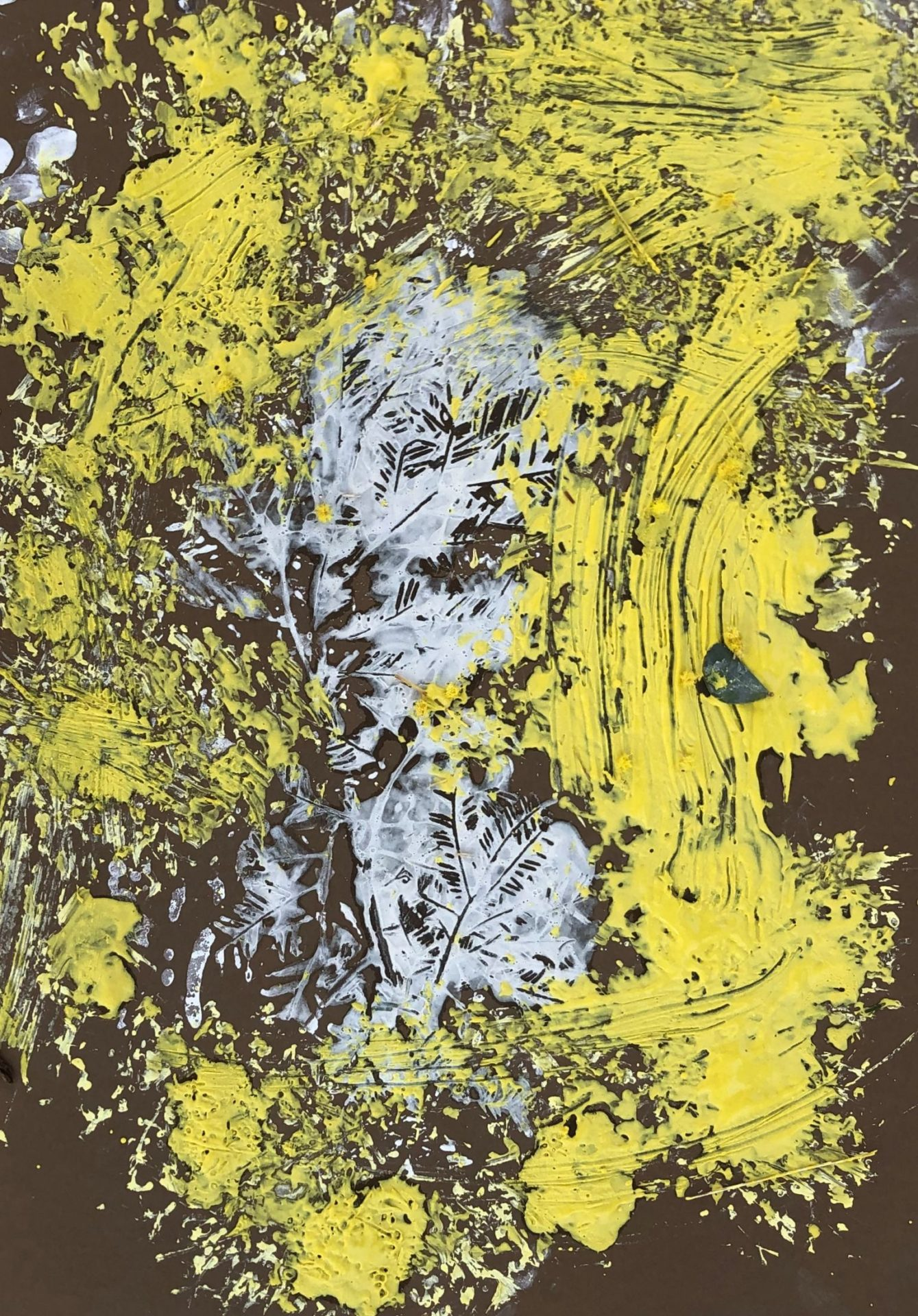 'Wattle Print', Clay on Paper, Kindergarten Students, Newling Public School