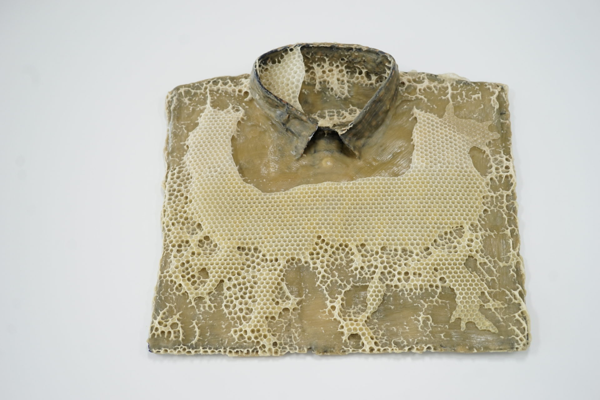 Franz Ehmann, 'Fourteen Days', 2018, Beeswax on cotton shirts with resin buttons